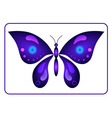 Butterfly beauty colorful sign neon 1 vector image
