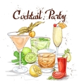 Contemporary Classics Cocktail Set cocktail party vector image vector image