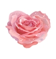 Heart-rose object flower on a white background vector image
