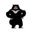 himalayan bear angry emotion aggressive wild vector image vector image