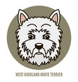 portrait of west highland white terrier vector image
