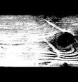 wooden grunge texture vector image vector image
