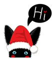 Black Rabbit Sneaking Christmas Day vector image vector image