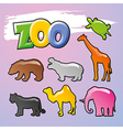 Color Zoo vector image vector image