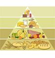 healthy food pyramid vector image vector image