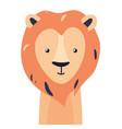 lion cute animal baby face vector image vector image