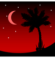 Palm tree at night vector image