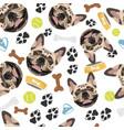 smiling dog french bulldog vector image vector image