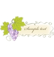 vintage banner with grapes and leaves vector image vector image