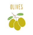 Olives isolated on white vector image