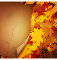 Autumn background with leaves and a paper vector image vector image