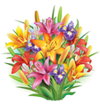 Bouquet of lilies and irises vector image vector image