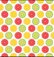 lemons and limes vector image vector image