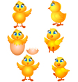 little group chicken cartoon vector image vector image