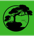 logo of bonsai tree vector image