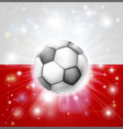 poland soccer flag vector image vector image