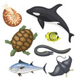 set of different types of sea animals vector image vector image