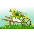 wheelbarrow and garden plants vector image vector image