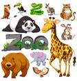 zoo and different types of wild animals vector image vector image