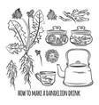 dandelion drink how make pharmacy vector image vector image