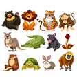 different kinds of jungle animals vector image vector image