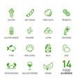 set food allergens vector image vector image