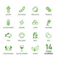 set of food allergens vector image