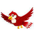 a cute red bird on white background vector image vector image