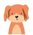 dog cute animal baface vector image vector image