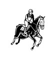 equestrian riding horse show jumping or stadium vector image