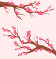 japan cherry branch with vector image