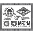 Baseball labels and badges vector image vector image