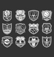 basketball sport league team badge icons vector image vector image
