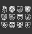 basketball sport league team badge icons vector image