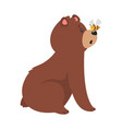 cartoon brown grizzly bear vector image vector image