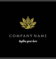 elegant luxury golden bird peacock logo design vector image