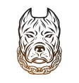 head of a pit bull with a collar vector image