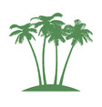 island with palms on white background vector image vector image