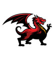 red dragon logo mascot in sport team style vector image