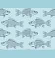 seamless background with drawn sketches of fish vector image
