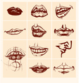 Set of sexy woman lips vector image vector image