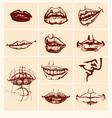 set sexy woman lips vector image