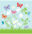 spring butterflies vector image vector image