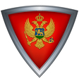 steel shield with flag montenegro vector image