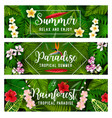 tropical summer banner of palm leaf and flower vector image vector image