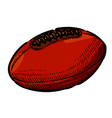 cartoon image of rugby ball vector image