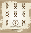 dna icons - vintage biology poster with dna vector image vector image
