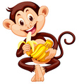 Little monkey eating banana vector image vector image
