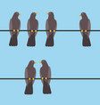 pigeons sitting on a wire vector image vector image