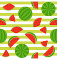 seamless pattern watermelon on stripe background vector image